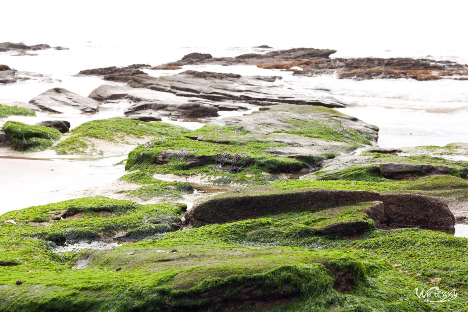 Excursion dans le Morbihan – Balade sur les plages de Bretagne
