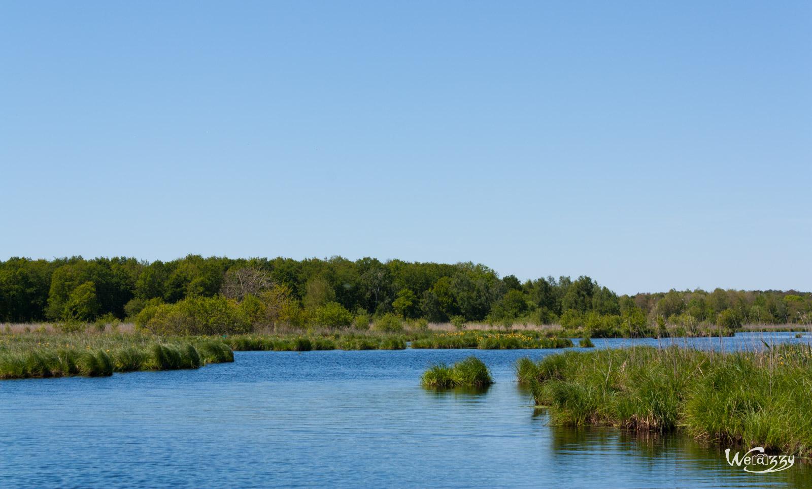 Marais de Grande Brière
