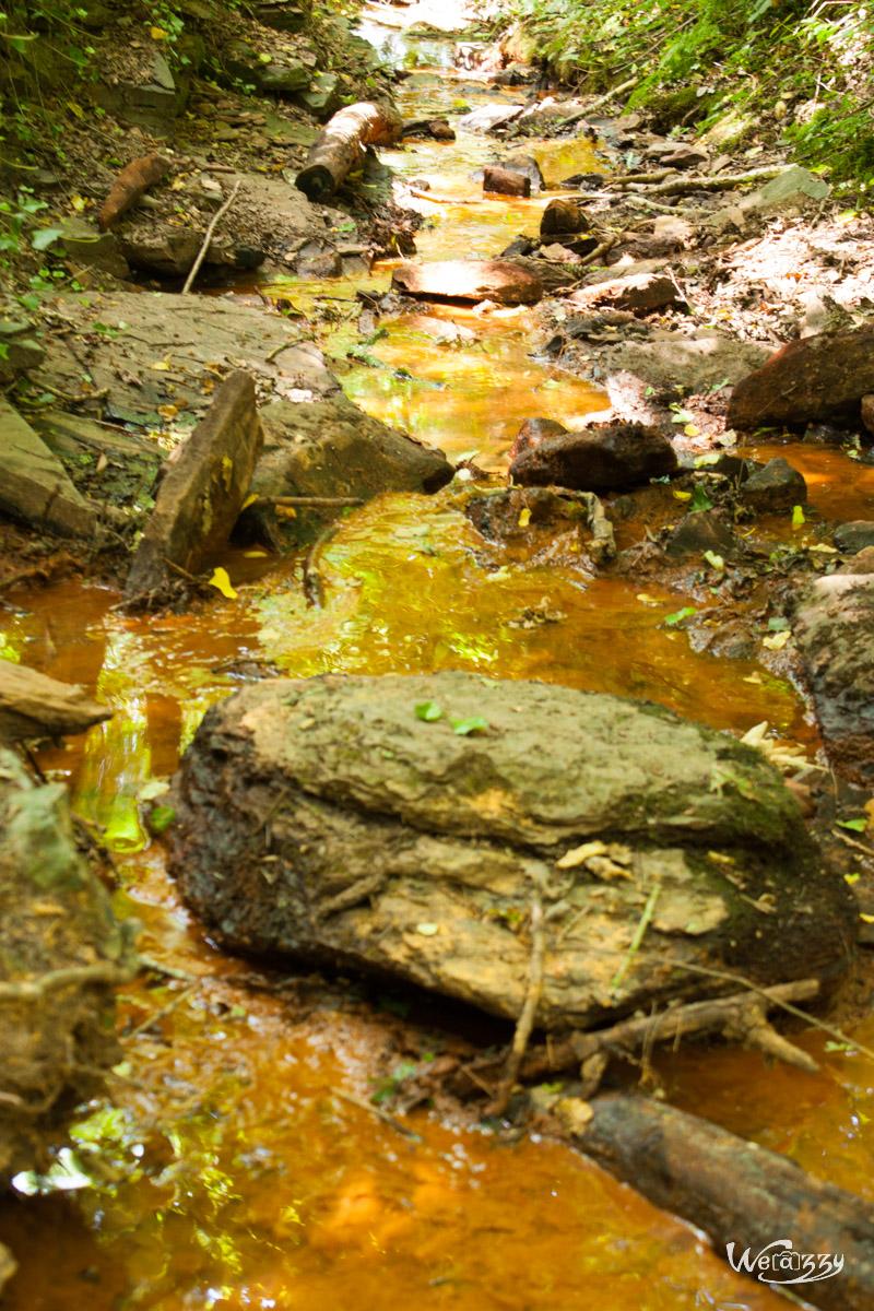 Ruisseau doré