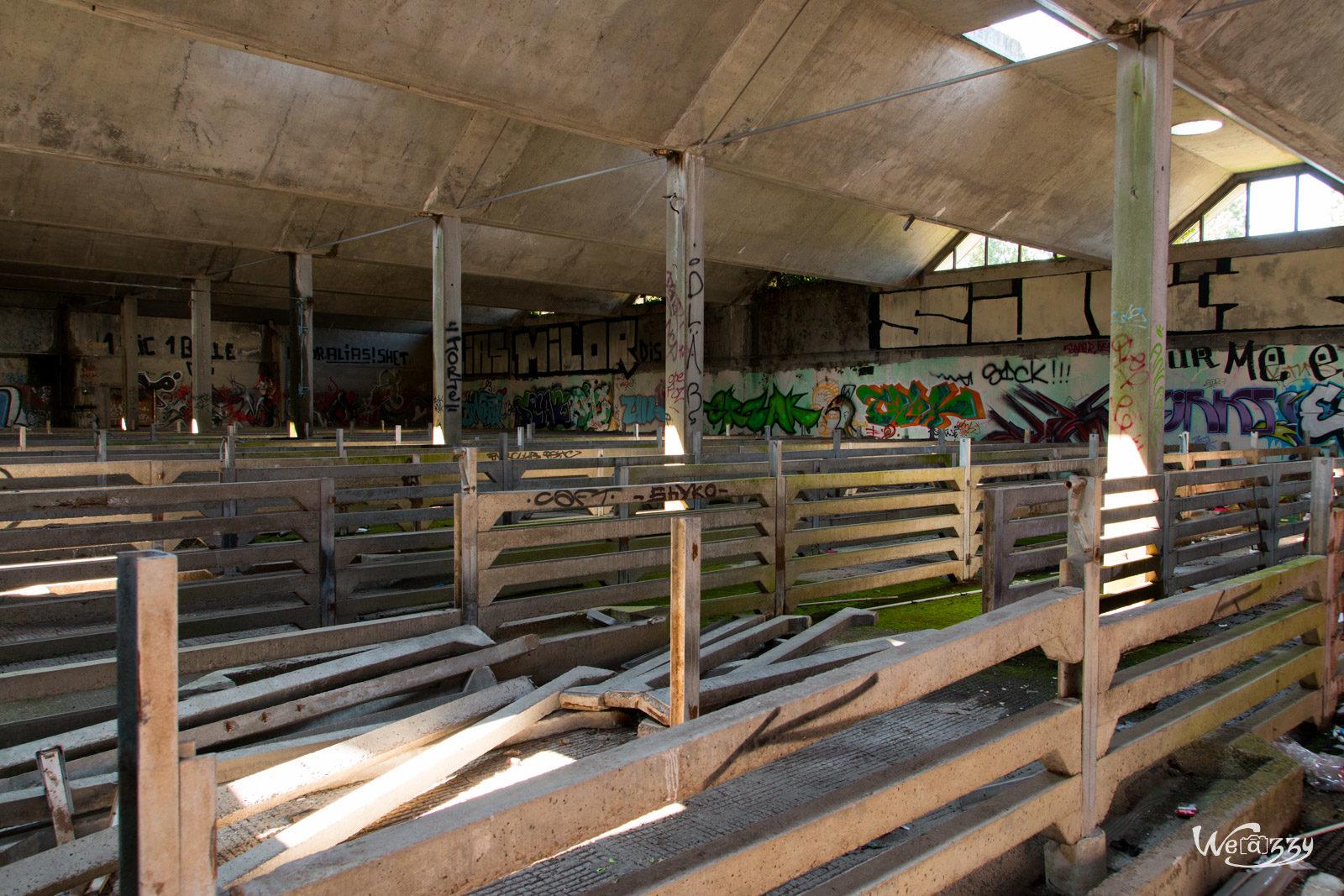 Abandonné, Abattoirs, Nantes, Urbex