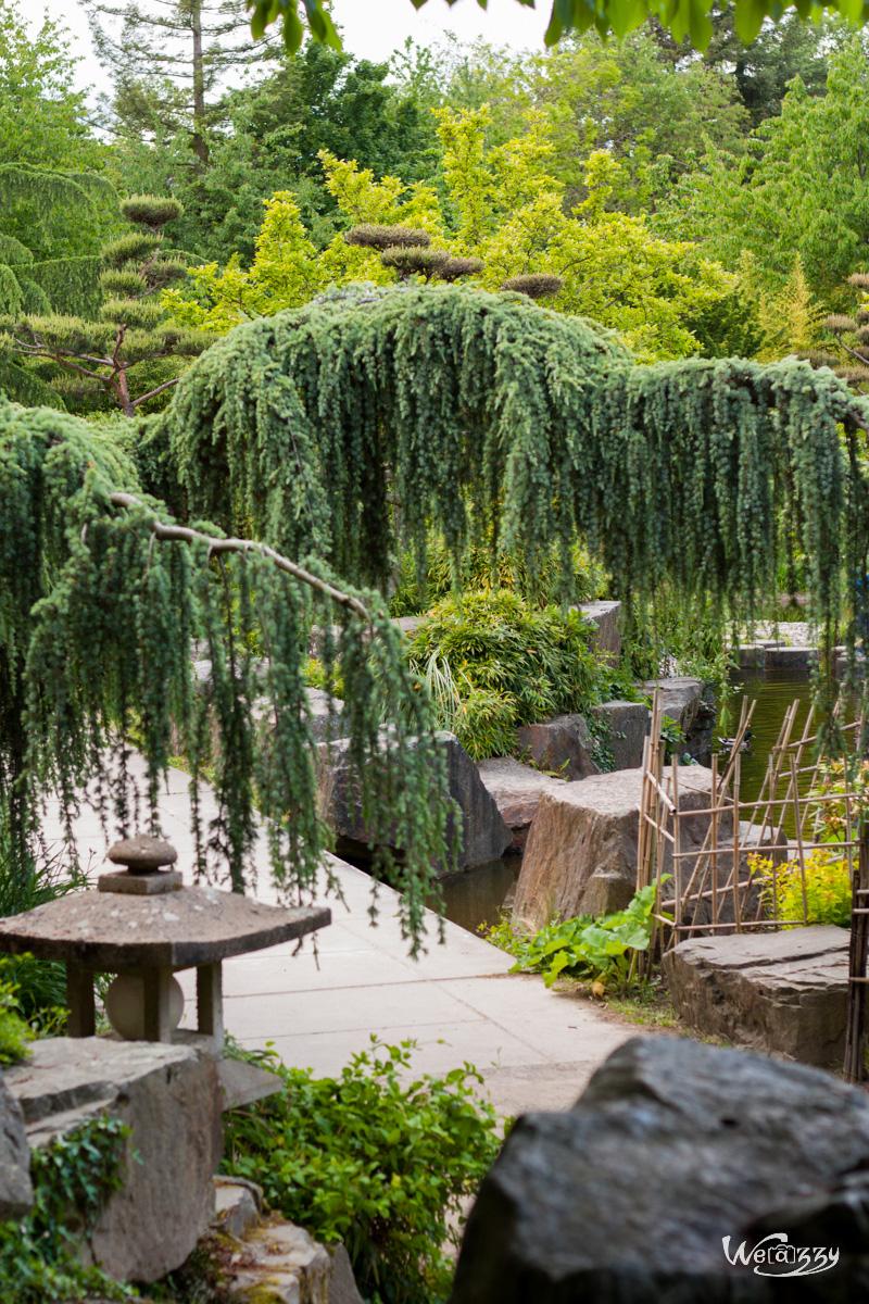 Jardin, Nantes, Plantes