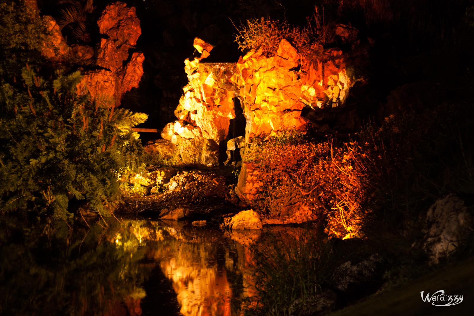 Botanique, Jardin, Nantes, Nocturne