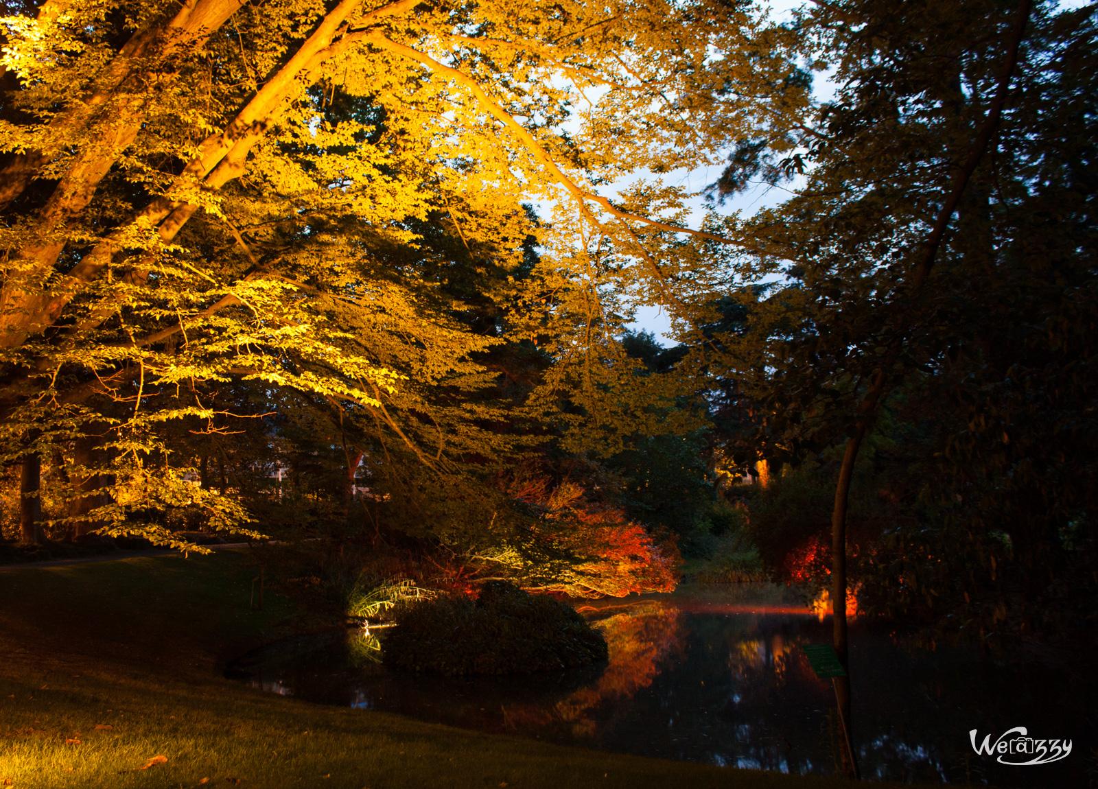 La nocturne du jardin des plantes de Nantes