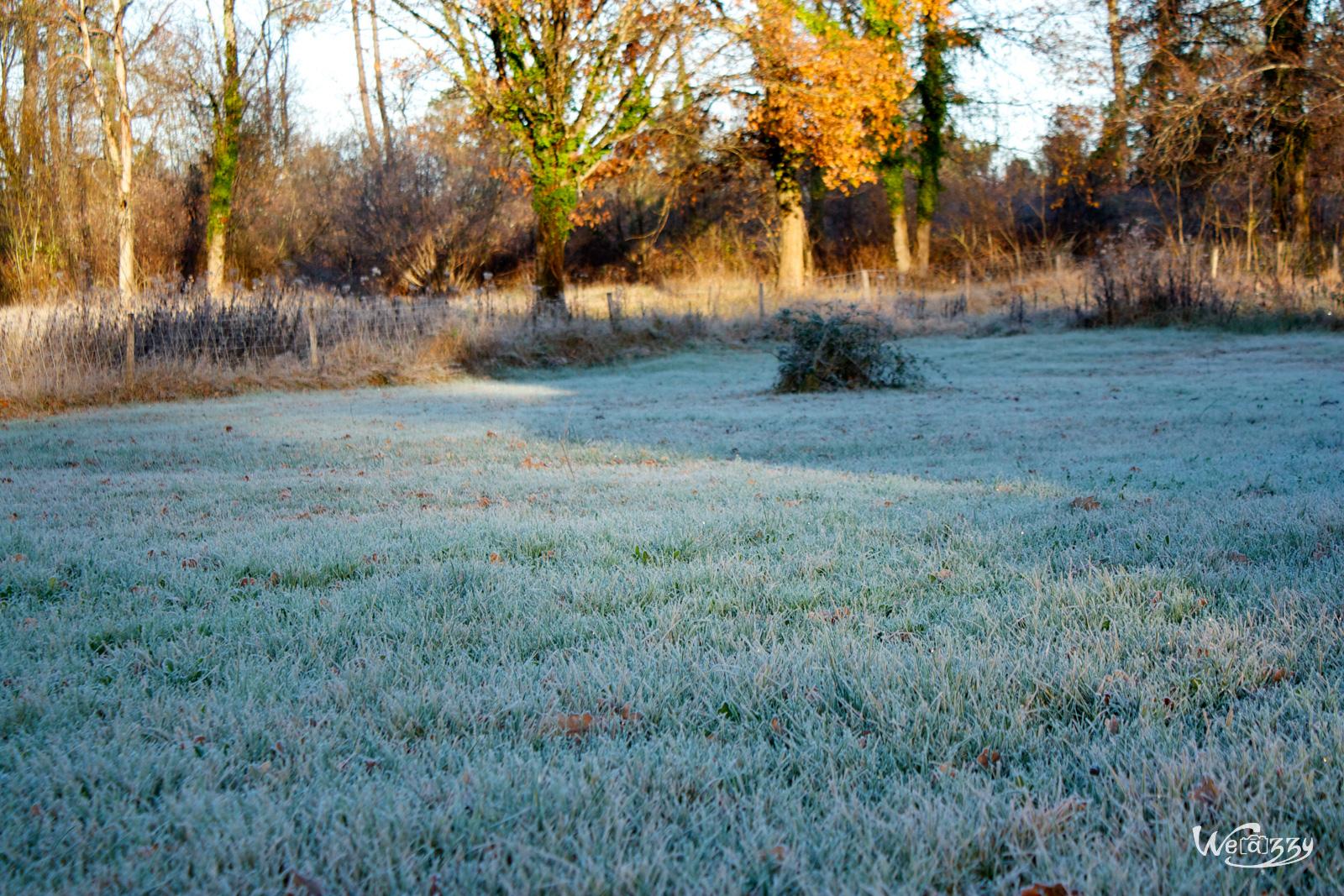 Jardin blanc.jpg