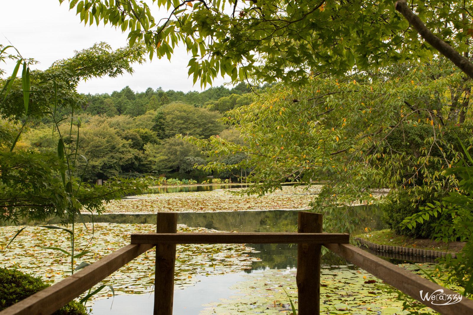 Japon, Kyoto, Voyage