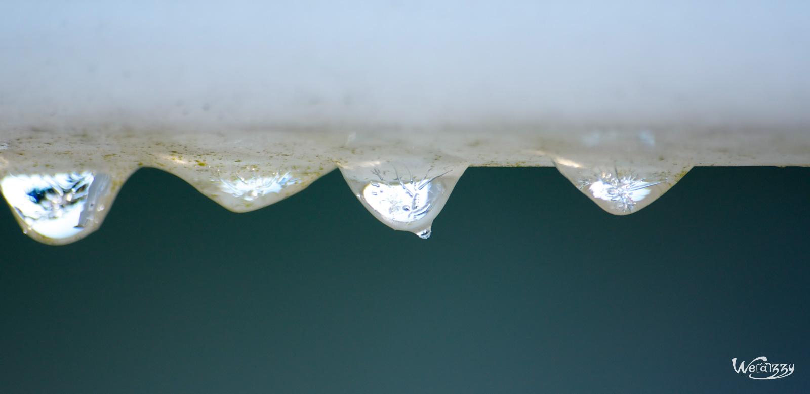 Quatuor de gouttes gelées.jpg