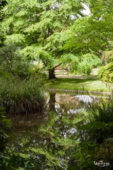 Botanique, France, Nantes, jardin