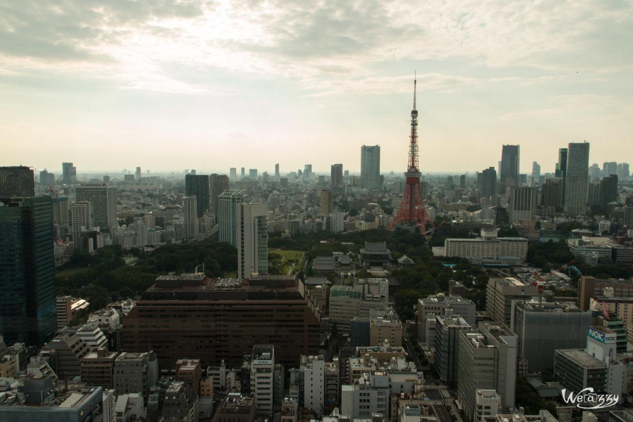 Japon, Tokyo, Voyage