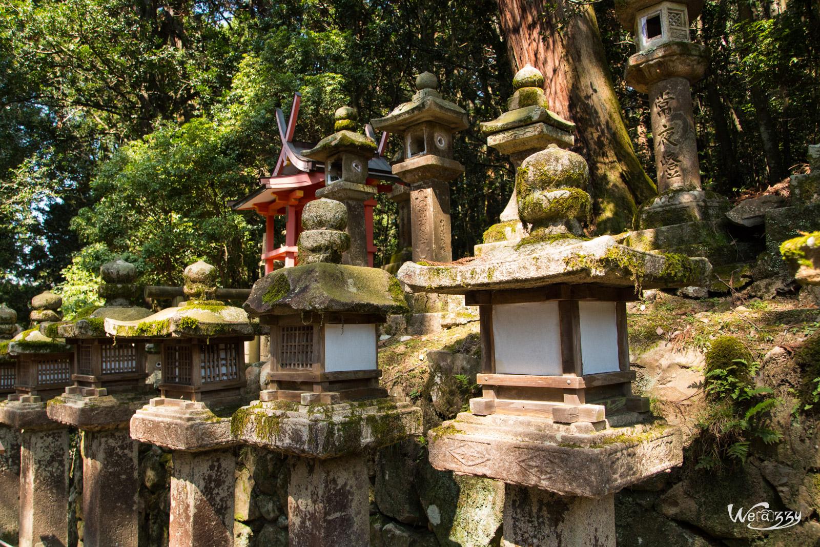 Mon voyage au Japon – Une journée à Nara