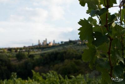 Italie, San Gimigiano & Monteriggioni, Toscane