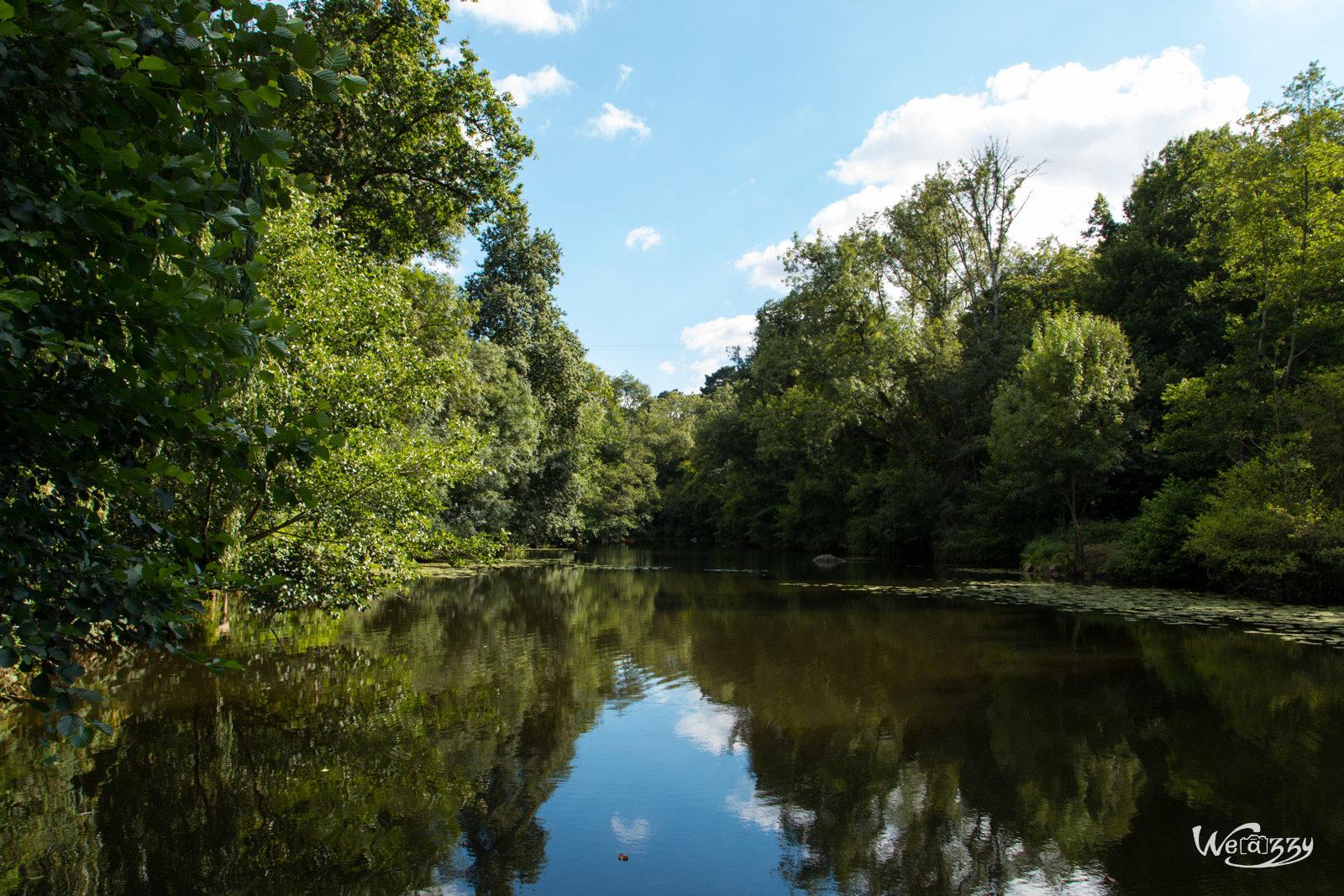 France, Nantes, Nature, Rivière