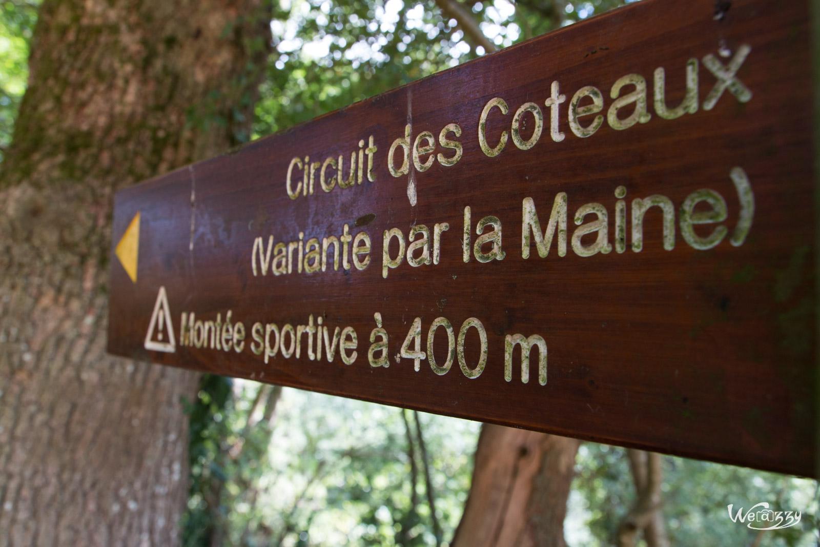 Randonnée estivale dans le vignoble et les coteaux de Nantes