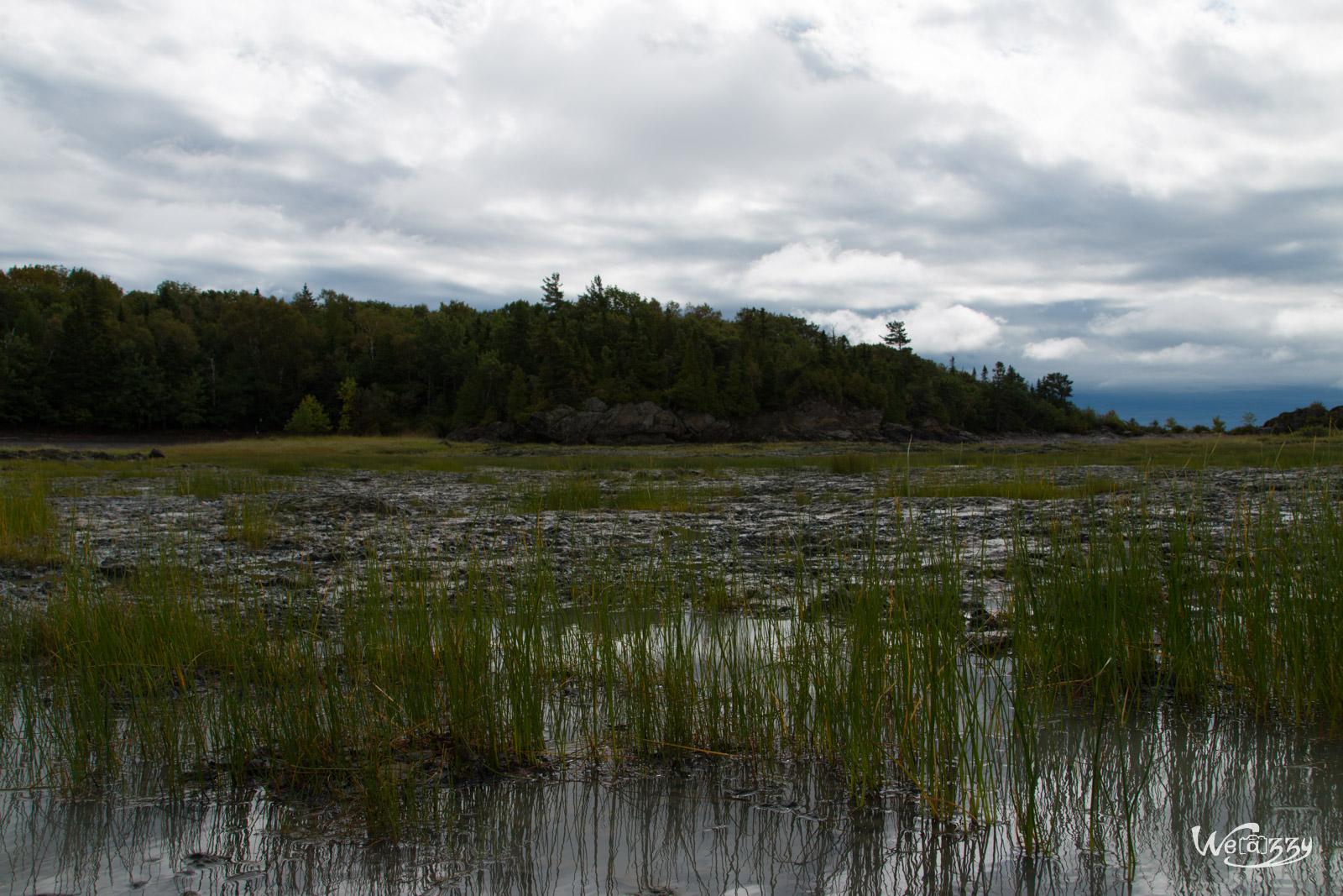 Canada, Ile aux grues, Montmagny, Quebec