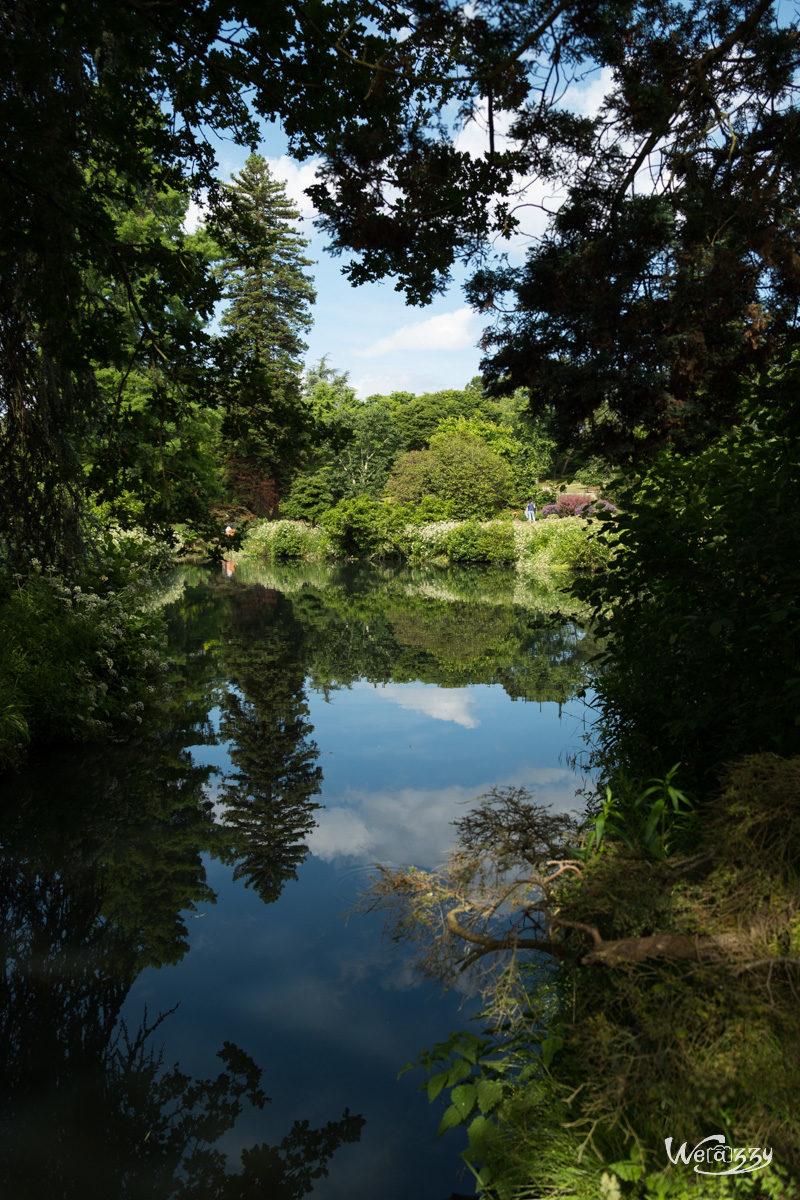France, Nantes, Roseraie, jardin