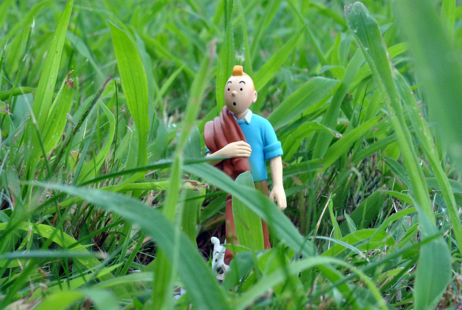 Le billet porte-nawaak – Tintin nous cache quelque chose