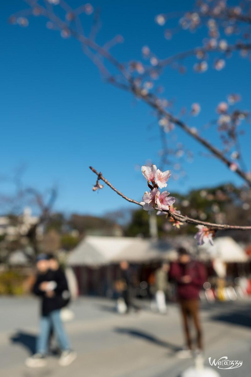 Japon, Tokyo, Voyage, Parc, Ueno
