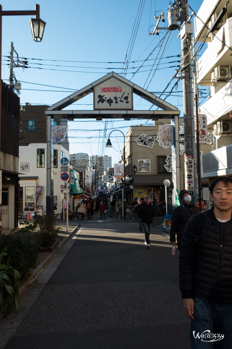 Japon, Tokyo, Voyage, Yanaka