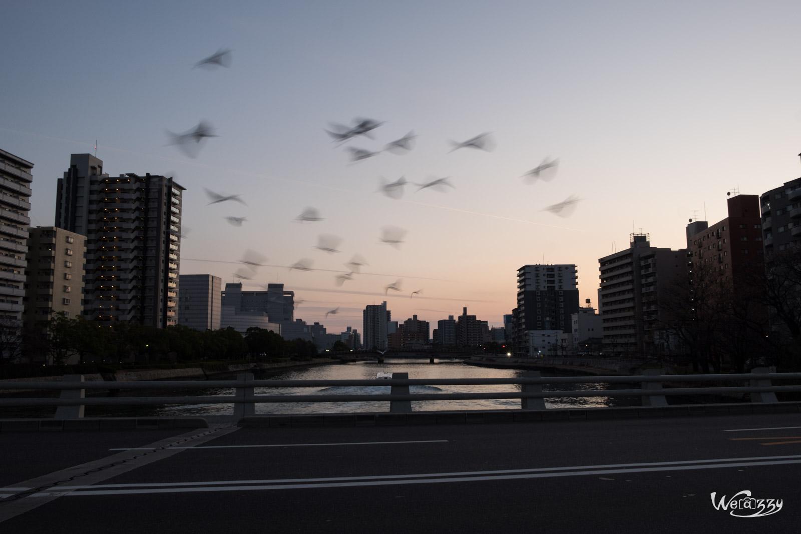 Hiroshima, Japon, Voyage
