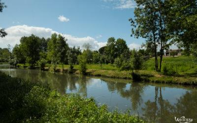 Mes premiers pas dans le marais poitevin – Un monde vert