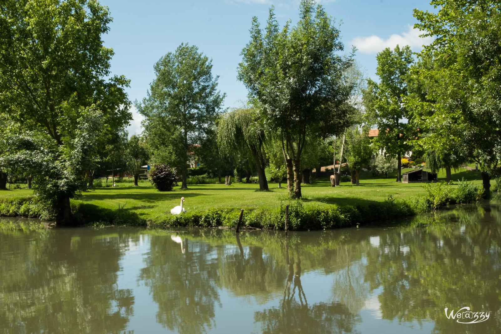 Marais, Nature, Poitevin