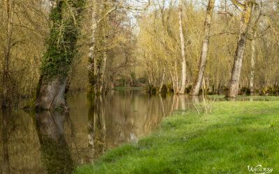 Petites villes du marais Poitevin – Balades dominicales idéales