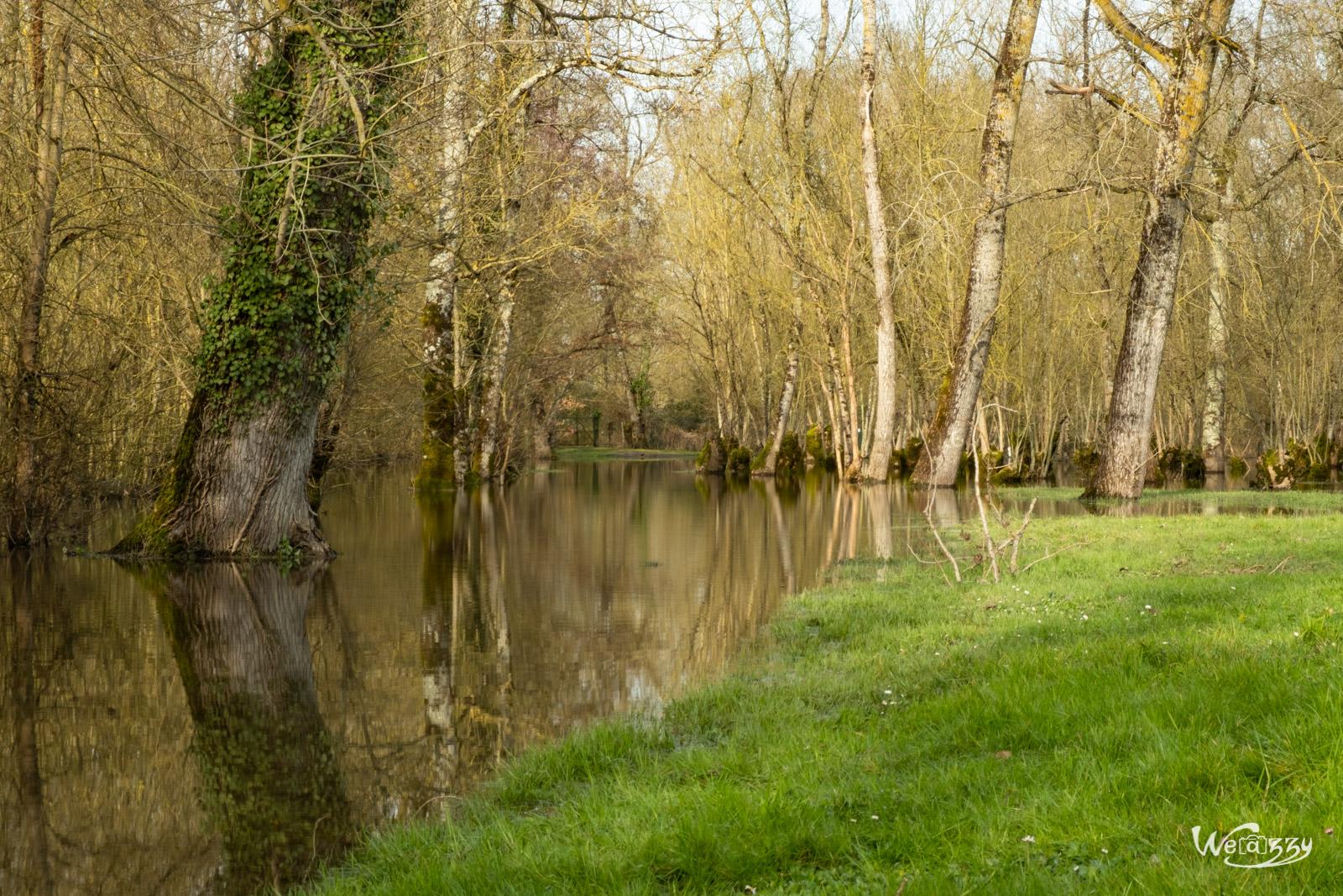 Courçon, France, Marais, Nature, Poitevin
